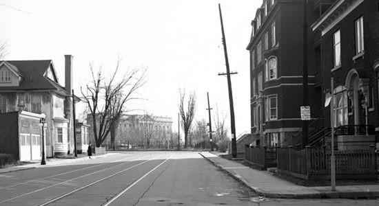 L'avenue des Érables en 1948 - Céline Fabriès