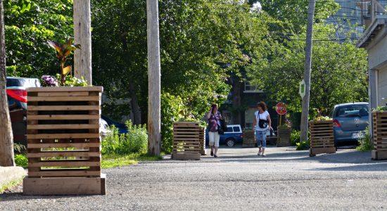 Sécurité routière : une meilleure cohabitation souhaitée dans les ruelles du Vieux-Limoilou - Viktoria Miojevic