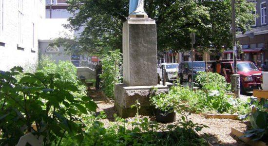 Vendredis Jardinage et cueillette au potager Verdir Saint-Roch