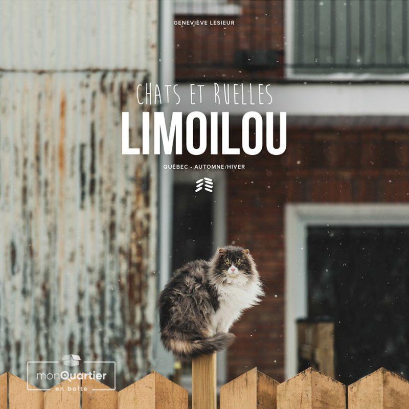 Limoilou, chats et ruelles – Automne-Hiver