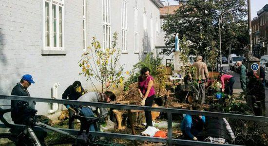 Verdir Saint-Roch : des projets qui rendent heureux - Monsaintroch