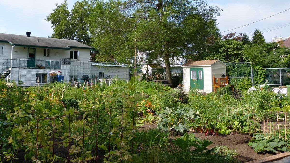 Jardinage urbain : une nouvelle « étincelle » pour mobiliser les citoyens | 4 mars 2018 | Article par Suzie Genest