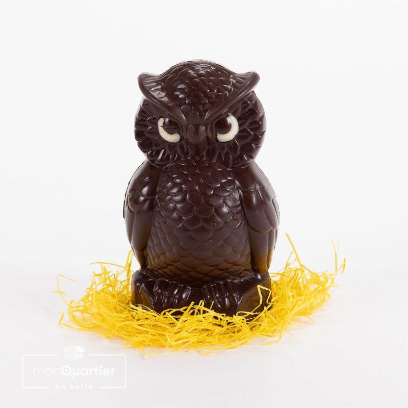 Hibou en chocolat