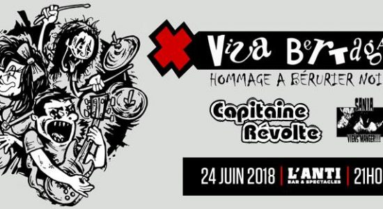 Viva Bertaga   Hommage à Bérurier Noir