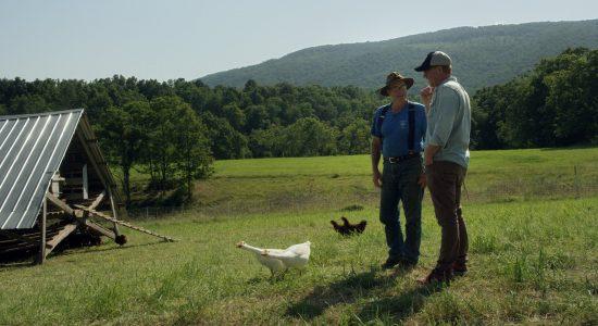 Les trésors de Gabrielle-Roy : <em>La ferme et son état</em> - Catherine Breton