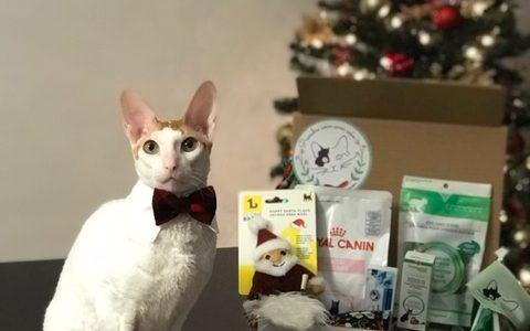 Boîtes-cadeaux pour chats   Clinique vétérinaire féline mobile