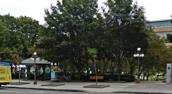 Des haltes-chaleur pour l'hiver dans deux parcs de Saint-Roch - Suzie Genest