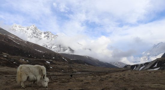 Conférence nos treks en Himalaya
