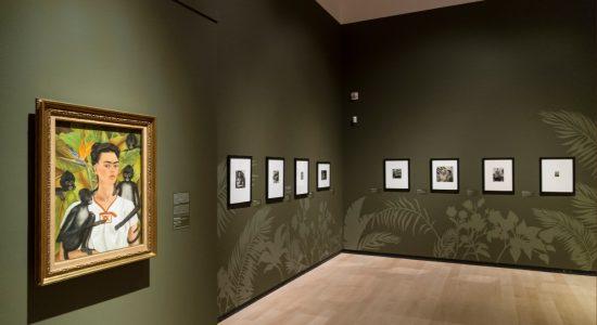 Frida Kahlo, Diego Rivera et le modernisme mexicain au MNBAQ - Jason Duval