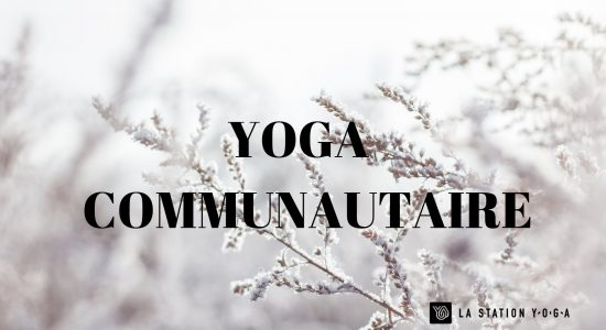 Yoga Communautaire
