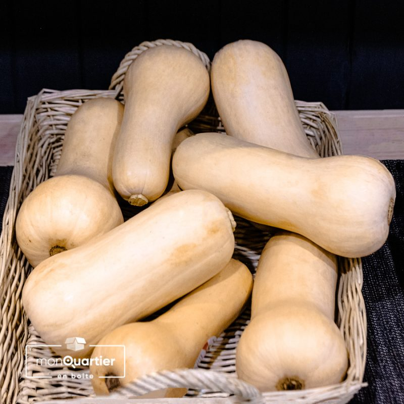 courges-butternut