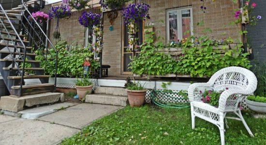 Parterres et balcons verdoyants et fleuris du Vieux-Limoilou (1) - Jean Cazes