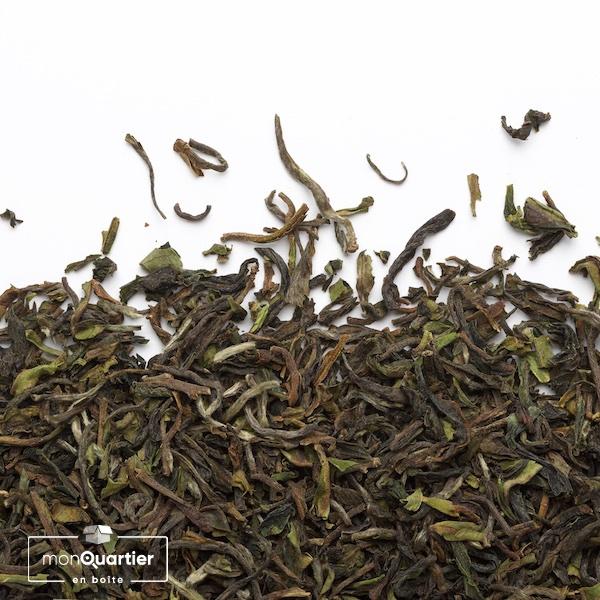 camellia-sinsensis-jungpana