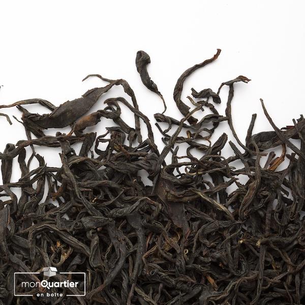 Tea Studio | Nilgiri Coonoor