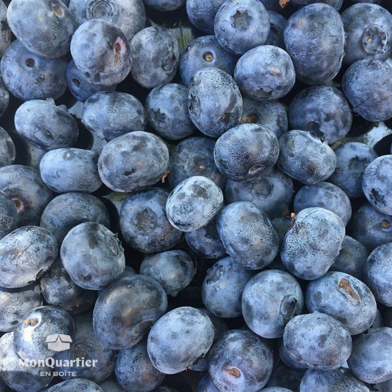 ferme-blouin-bleuets