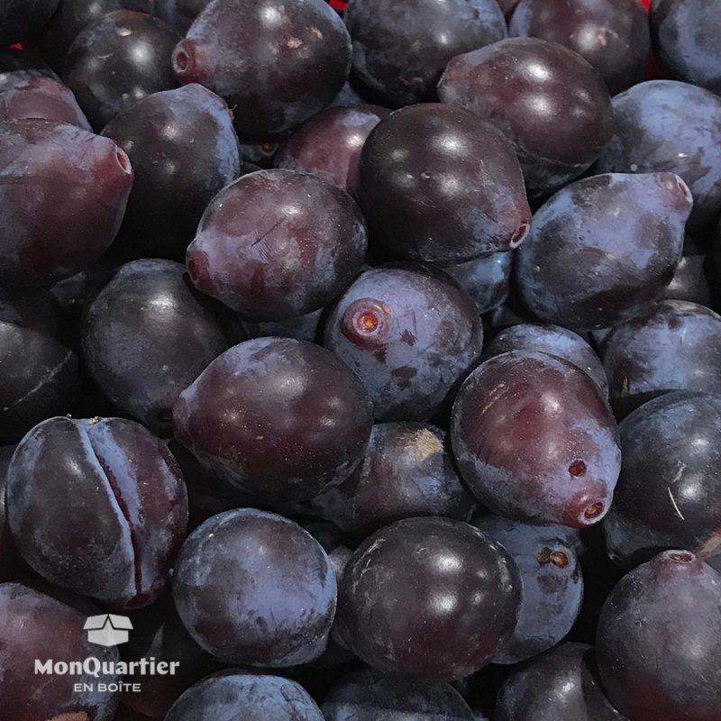 ferme-blouin-prunes-damas