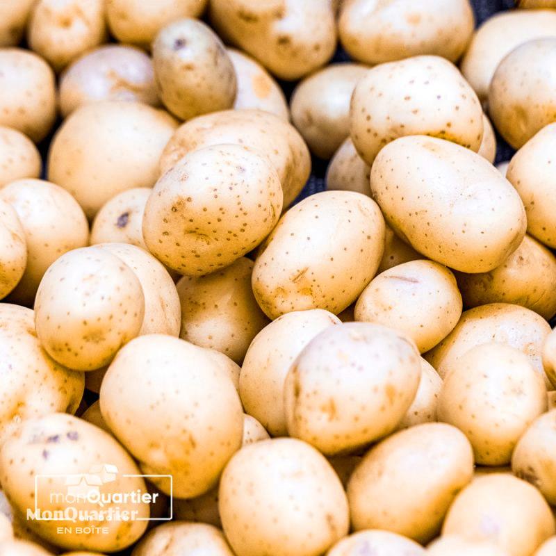 patates-jaunes