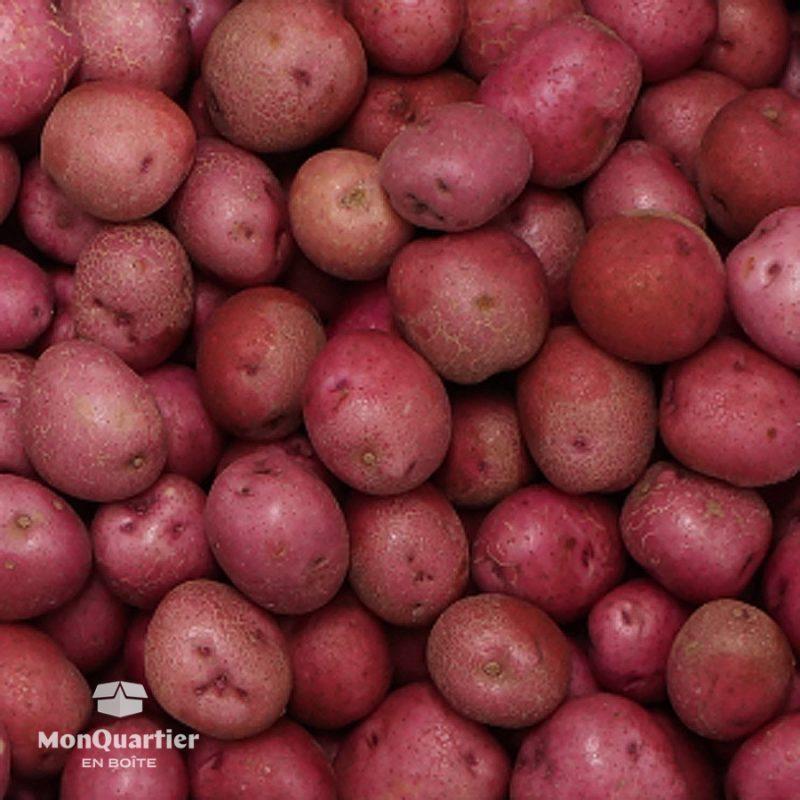 patates-rouges