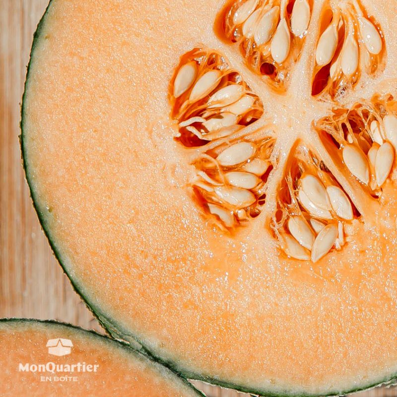 melon-cantaloup-2