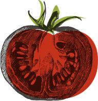 Tomaterie (La)